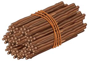 Wooden stick in one bunch vector
