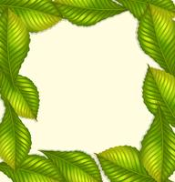 Frame design with green leaves