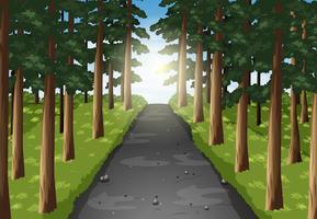 Bakgrundsscen på vägen i skogen