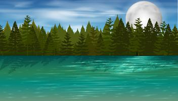 Background scene with pine trees by the lake
