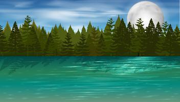 Scène de fond avec des pins au bord du lac