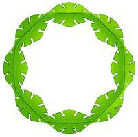 Una cornice verde