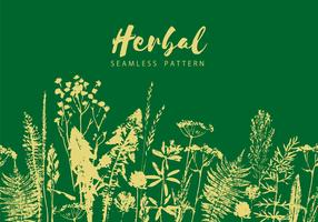 Herbal seamless pattern. Botanical border. Vector grass background.