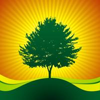 vector tree on shine background
