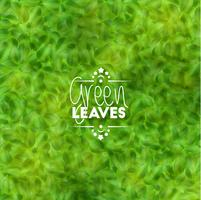 Green leaves background, vector