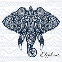 Vector drawing elephant with ethnic patterns of India.