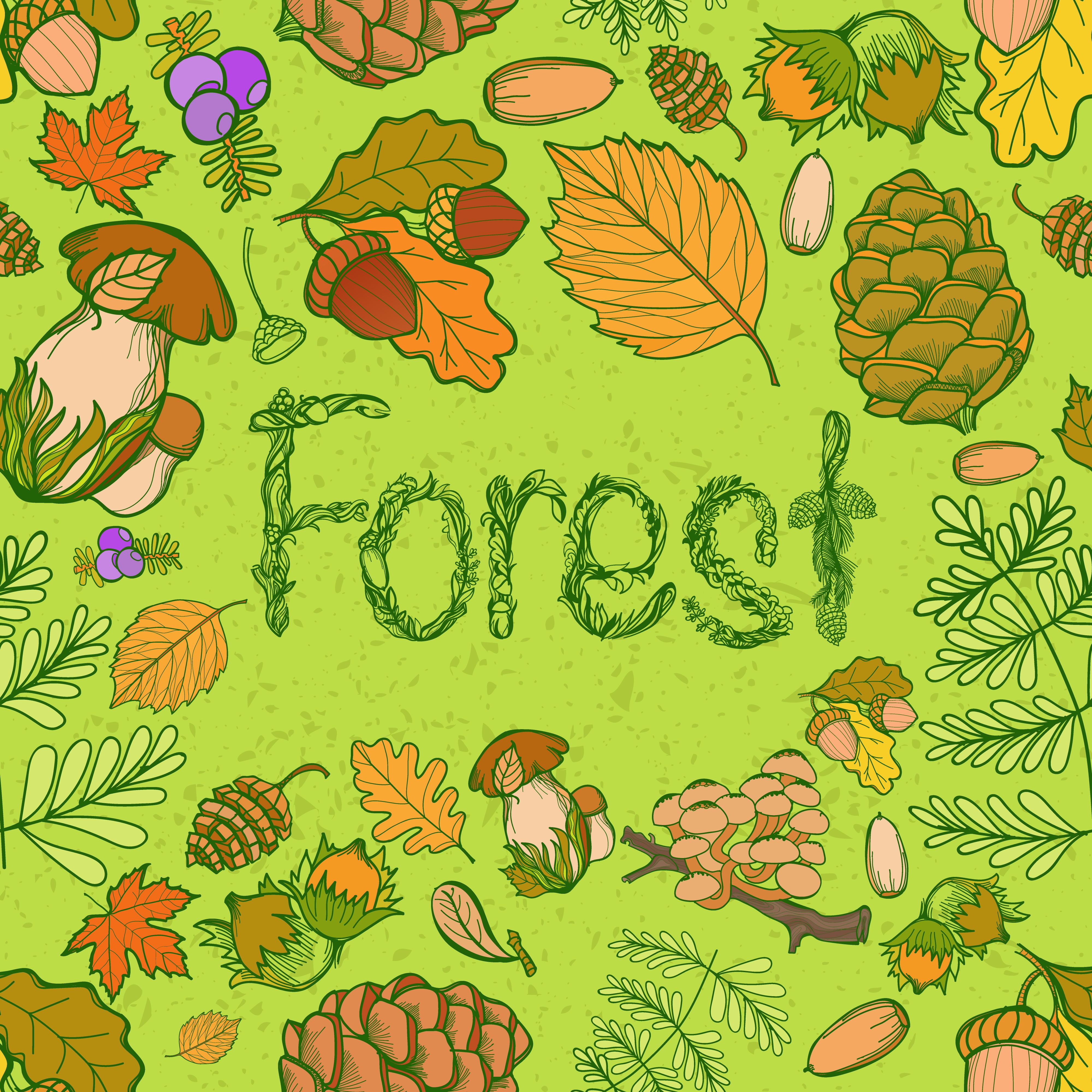 Autumn Leaf Color Illustration, PNG, 918x894px, Autumn, Autumn Leaf Color,  Drawing, Flower, Food Download Free