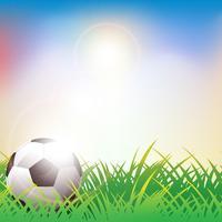 Balón de fútbol sobre fondo verde hierba