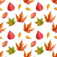 Vector seamless with autumn maple leaves