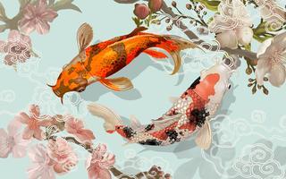 Zwei japanische Koi-Fischschwimmen