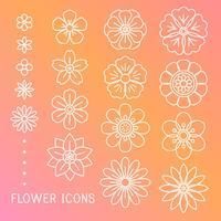 Vecteur de belles fleurs