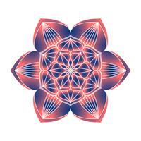 Mandala Ornament Vektorbild