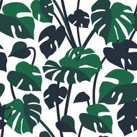 Vector seamless pattern with monstera leaves, philodendron plant.