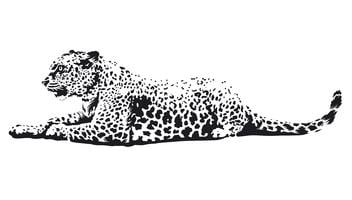 Leopard Vector Art