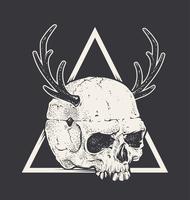 Skull with Horns