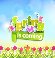 Spring - greeting card. vector
