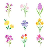 Hand drawn spring botanical flowers