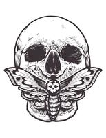 Crânio com traça Vector