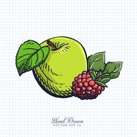 Illustration de fruits et légumes dessinée à la main