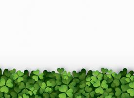 Green clover leaves at bottom vector