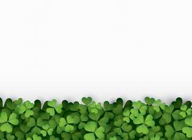 Gröna klöver lämnar botten