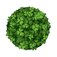 Clover-leaf circle vector