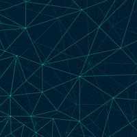 Abstract polygon lines background vector