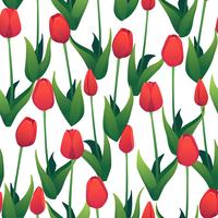 Seamless pattern with red tulips on white background.