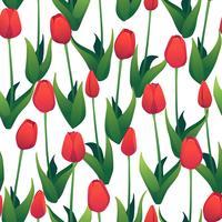 Patrón sin fisuras con tulipanes rojos sobre fondo blanco.