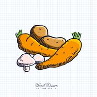 Hand Drawn Vegetable Illustration