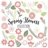 Flores de primavera de durazno