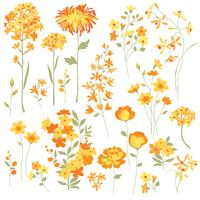 Hand Drawn Yellow Flowers