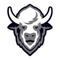 Buffalo Head Logo Mascot