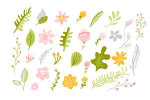 Set of Vector isolated flat flower on white background