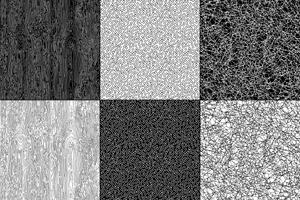black and white natural textures vector
