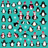 pingvin clipart