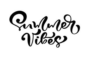Calligraphy lettering phrase Summer Vibes vector
