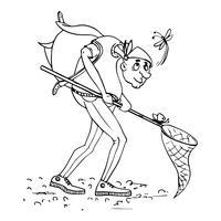 Naturalista, entomólogo del esbozo. vector