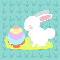 Pequeno coelho