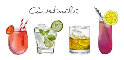 Hand drawn illustration with cocktails.