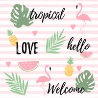 Tropical background with flamingos watermelon and pineapples