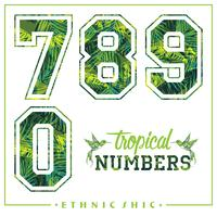 Vector tropical numbers for t-shirts, posters, card and other uses.