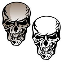 Crânio humano isolado ilustração vetorial