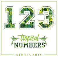 Vector de números tropicales para camisetas, carteles, tarjetas y otros usos.