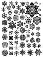 Flor de la plantilla de ilustración de diseño de vector de nieve