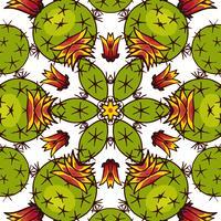Kaleidoscope of succulents.