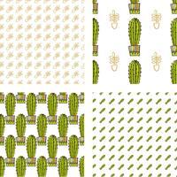 Conjunto padrão sem emenda de cactos e suculentas em vasos.