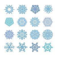 Various winter snowflakes  vector