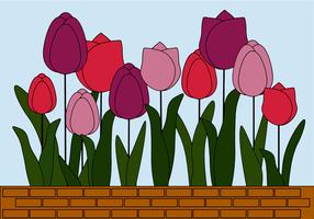 Vettore gratuito di tulipani