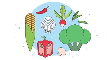 Fresh Organic Vegetables Vector